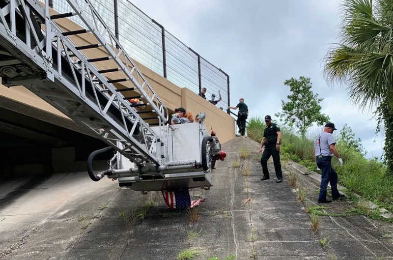 Police rescue girl from overpass